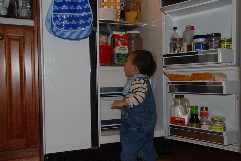 fridge04.jpg